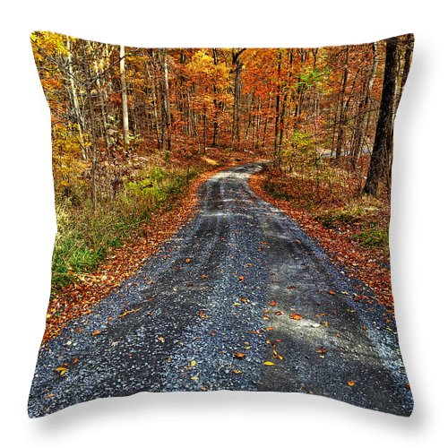 Autumn Throw Pillow featuring the photograph Country Super Highway by Lara Ellis
