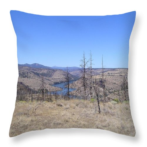 Landscape Throw Pillow featuring the photograph Countryside by Heather L Wright
