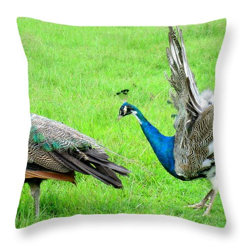 Peacock Throw Pillow featuring the photograph Courtship Display by Randall Weidner