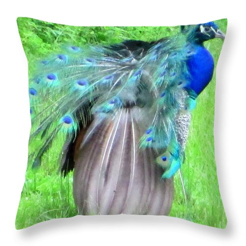 Peacock Throw Pillow featuring the photograph Courtship Ritual by Randall Weidner