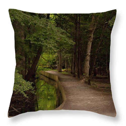 Cades Cove Throw Pillow featuring the photograph Cove Path by Terry Anderson