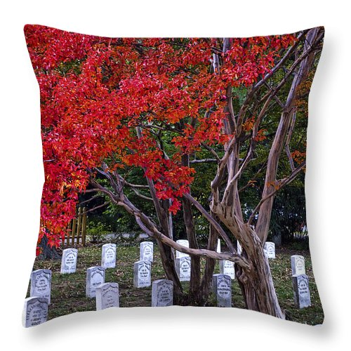 Arlington Throw Pillow featuring the photograph Covered In Fall Colors by Paul W Faust - Impressions of Light