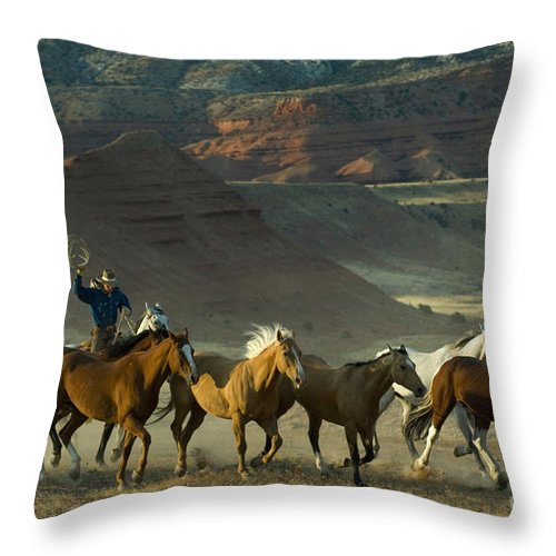 Cowboy Throw Pillow featuring the photograph Cowboy Driving Horses by John Shaw