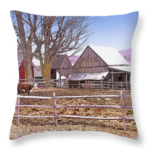Jenne Farm Throw Pillow featuring the digital art Cows At Jenne Farm by Nancy Griswold