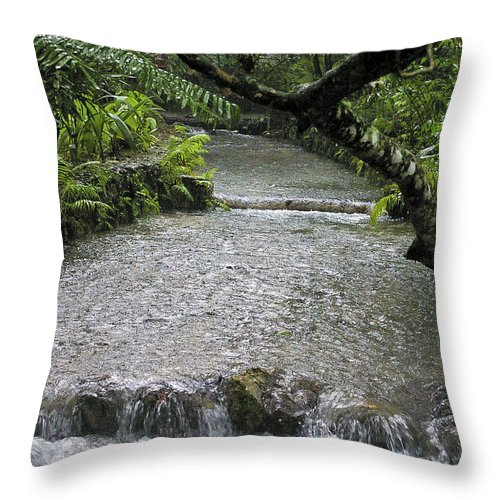 Jamaica Throw Pillow featuring the photograph Coyaba River Gardens 6 by Nancy L Marshall