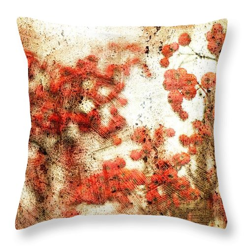 Crab Apple Throw Pillow featuring the photograph Crab Apple Bounty by Suzanne Powers