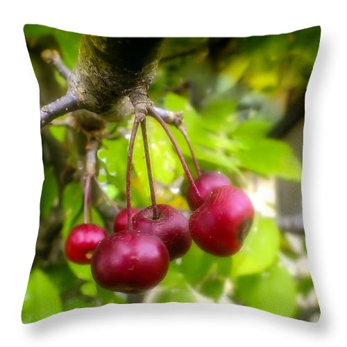 Crabapples Throw Pillow featuring the photograph Crabapple Hill by Karen Wiles