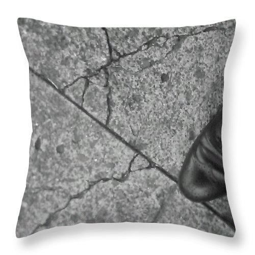 Crack In The Pavement Throw Pillow featuring the photograph Crack In The Pavement by William Braddock