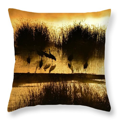 Sunrise Throw Pillow featuring the photograph Cranes On Golden Pond by Whispering Peaks Photography