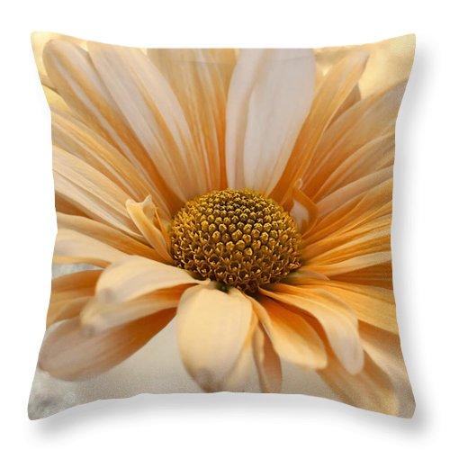 Floral Throw Pillow featuring the photograph Creamsicle Martini by Darlene Kwiatkowski