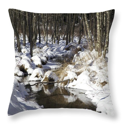 Snow Throw Pillow featuring the photograph Creek In Winter by Cheryl Gayser