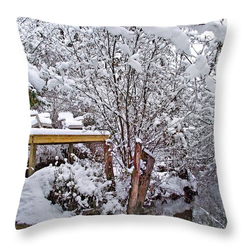 Landscapes Throw Pillow featuring the photograph Creekside In The Snow by Duane McCullough