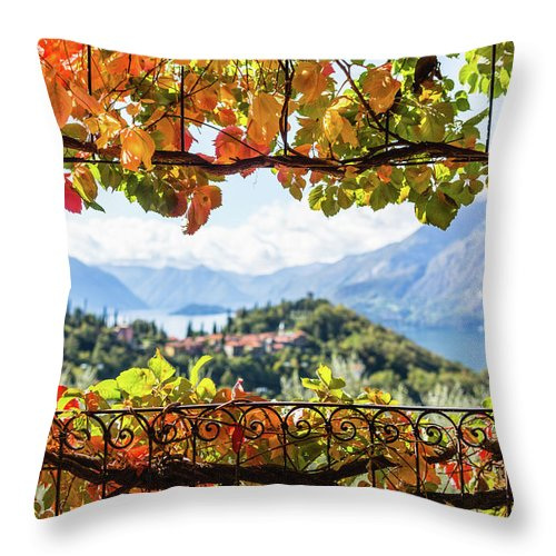 Scenics Throw Pillow featuring the photograph Creeper In Autumn by Deimagine