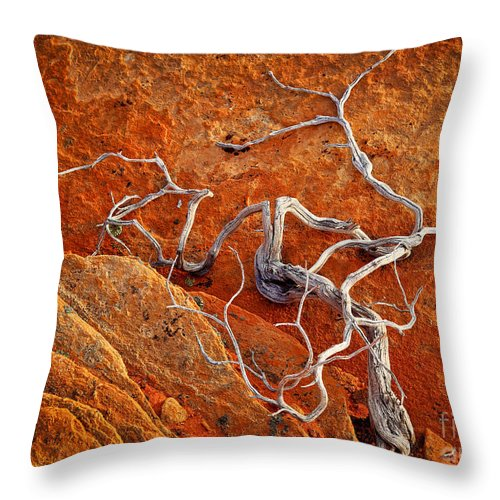 America Throw Pillow featuring the photograph Creepy Crawly by Inge Johnsson