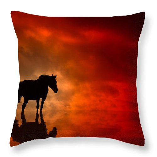 Red Throw Pillow featuring the photograph Crimson by Bahadir Yeniceri
