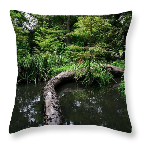 Landscape Throw Pillow featuring the photograph Crossing The Pond by Earl Johnson