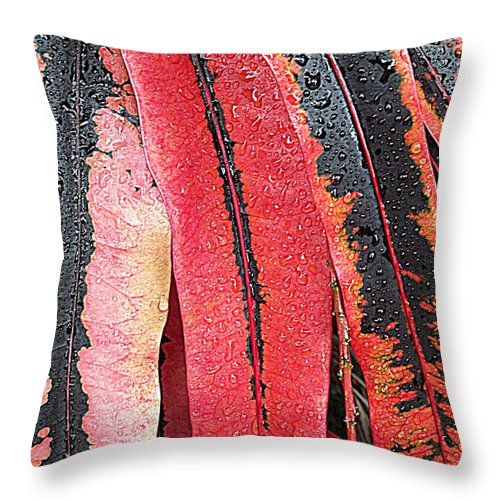 Dew Throw Pillow featuring the photograph Crotans With Dew by Randall Weidner