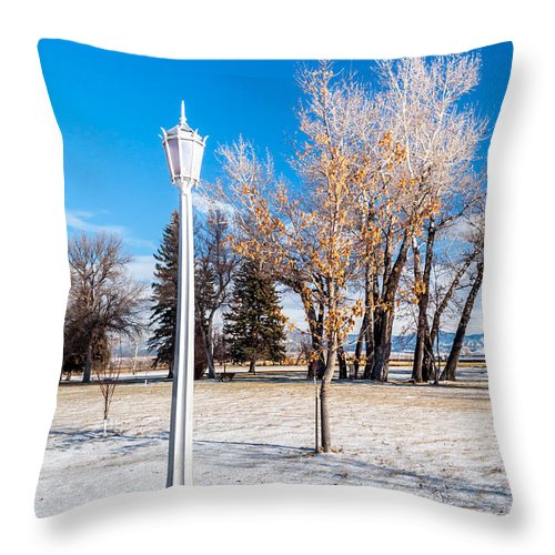 Street Lamp Throw Pillow featuring the photograph Crown Lantern by Fran Riley