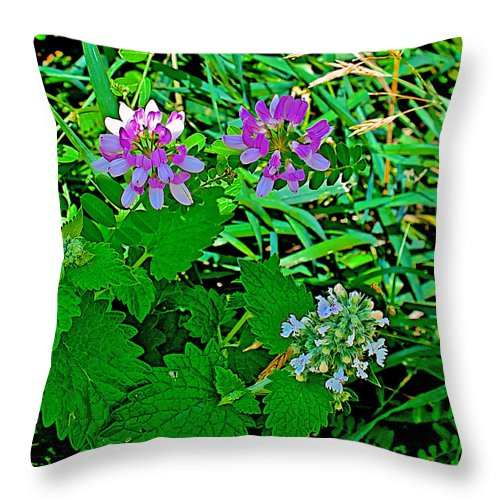 Crown Vetch And Catnip In Pipestone National Monument Throw Pillow featuring the photograph Crown Vetch And Catnip In Pipestone National Monument-minnesota by Ruth Hager