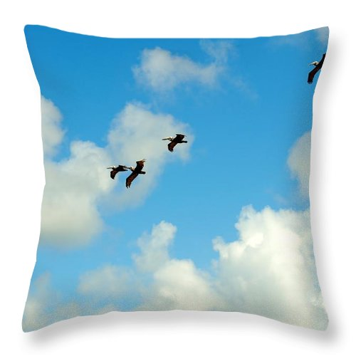 Pelicans Throw Pillow featuring the photograph Cruising The Dunes by Kelly Nowak