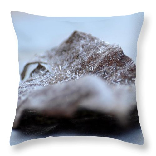 Crystalized Throw Pillow featuring the photograph Crystalized by Maria Urso
