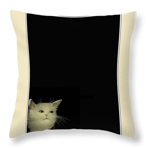 Diane Strain Throw Pillow featuring the painting Curious Cat by Diane Strain