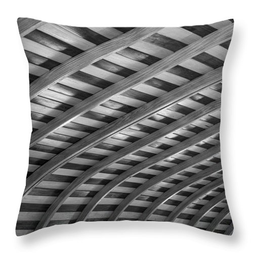 Ribs Throw Pillow featuring the photograph Curves by David Rucker