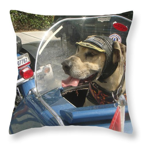 Karen Zuk Rosenblatt Art And Photography Throw Pillow featuring the photograph Cycle Dog Square by Karen Zuk Rosenblatt