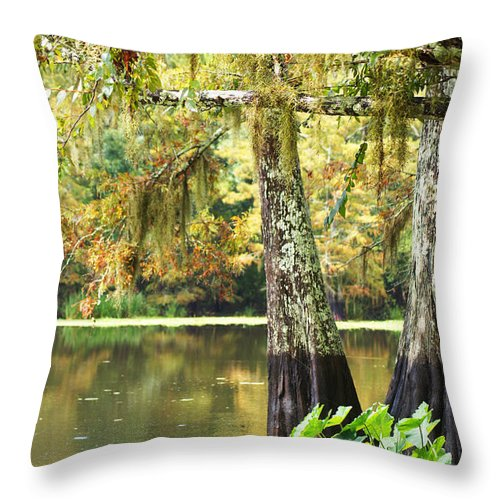 Cypress Throw Pillow featuring the photograph Cypress And Moss by Southern Tradition