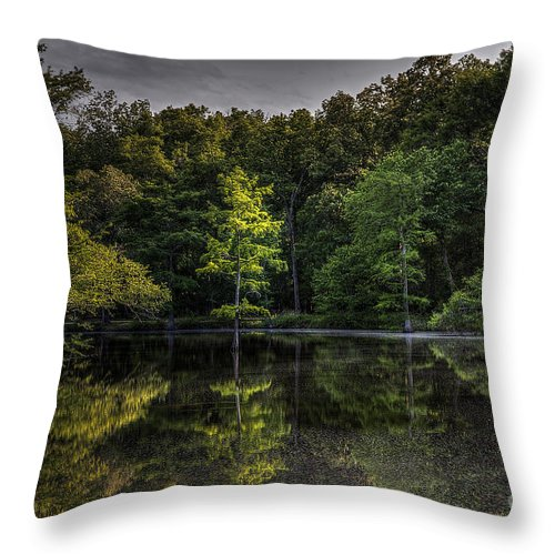 2014 Throw Pillow featuring the photograph Cypress At Dusk by Larry Braun