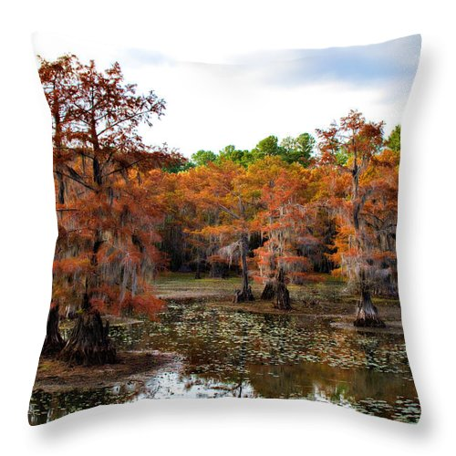 Autumn Throw Pillow featuring the photograph Cypress Isles by Lana Trussell