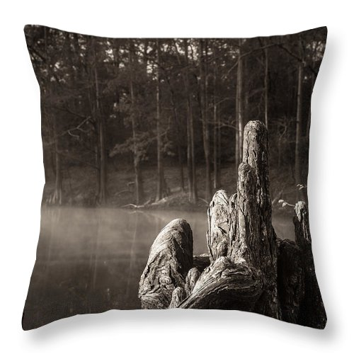Cypress Knees Throw Pillow featuring the photograph Cypress Knees In Sepia by Imagery by Charly