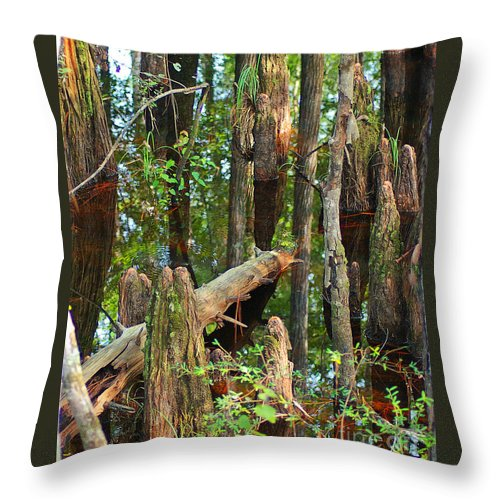 Cypress Throw Pillow featuring the photograph Cypress Knees by Nancy L Marshall