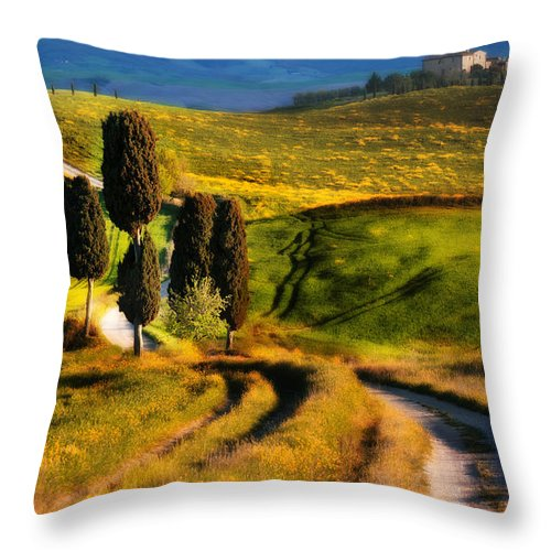 Cypryss Throw Pillow featuring the photograph Cypresses Of Toscany by Jaroslaw Blaminsky