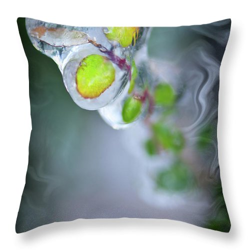 Defrost Throw Pillow featuring the photograph D E F R O S T by Charles Dobbs