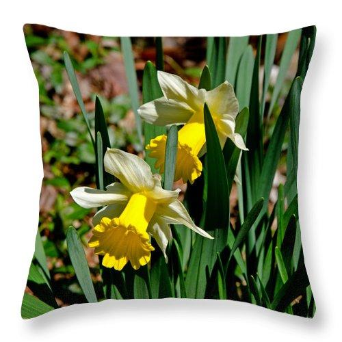 Daffodil Throw Pillow featuring the photograph Daffodil Buddies by Paul Mashburn