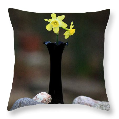 Daffodils In Black Amethyst 2 Throw Pillow featuring the photograph Daffodils In Black Amethyst 2 by PJQandFriends Photography