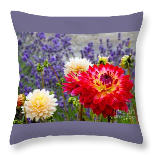 Digital Manipulation Throw Pillow featuring the photograph Dahlias Among The Lavender by Chris Anderson