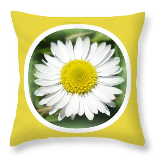 Daisy Throw Pillow featuring the photograph Daisy Closeup by The Creative Minds Art and Photography