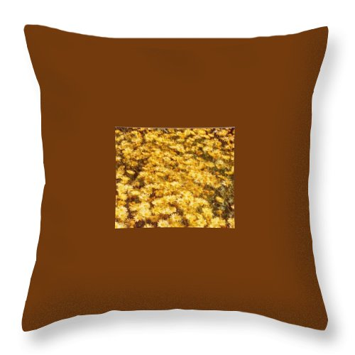 Daisy Throw Pillow featuring the photograph Daisy Field by Jacqueline Russell
