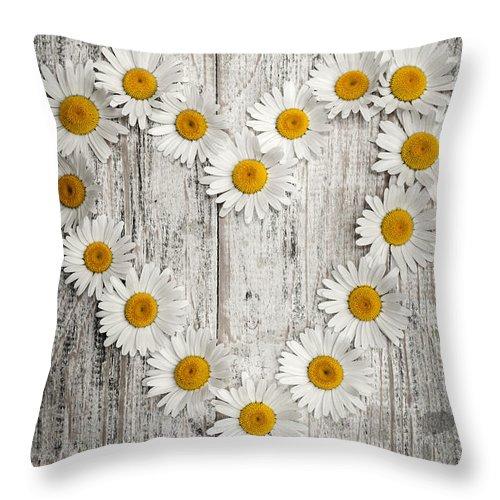 Daisy Throw Pillow featuring the photograph Daisy Heart On Old Wood by Elena Elisseeva