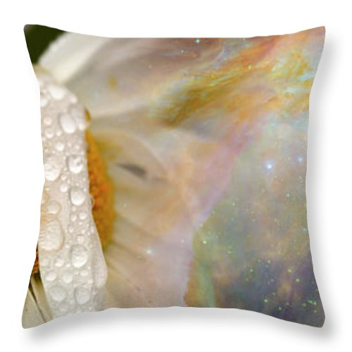 Photography Throw Pillow featuring the photograph Daisy With Hubble Cosmos by Panoramic Images
