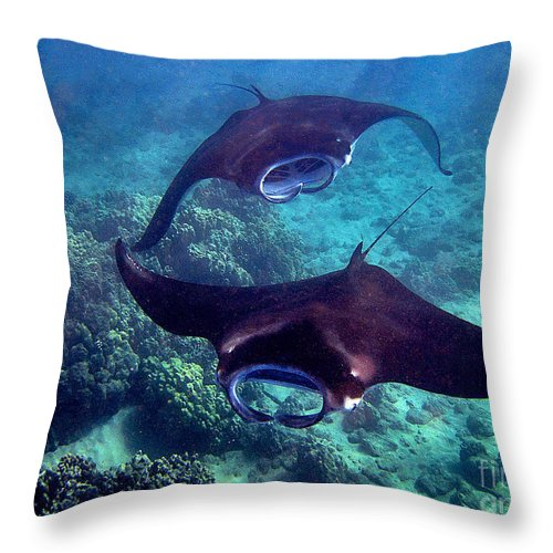 Manta Rays Throw Pillow featuring the photograph Dancers Of The Deep by Bette Phelan