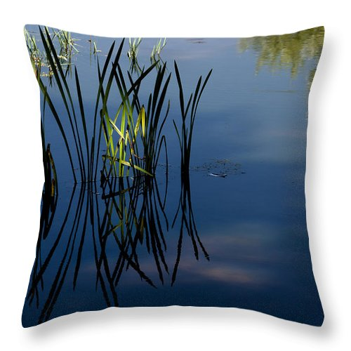 Reflexes Throw Pillow featuring the photograph Dancing On Mirror by Edgar Laureano