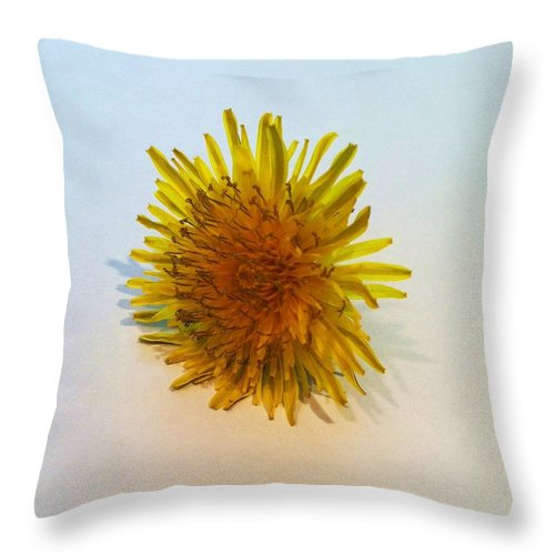 Dandelion Throw Pillow featuring the photograph Dandelion II by Anna Villarreal Garbis