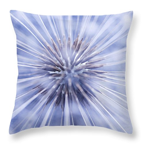 Dandelion Throw Pillow featuring the photograph Dandelion Seeds by Elena Elisseeva