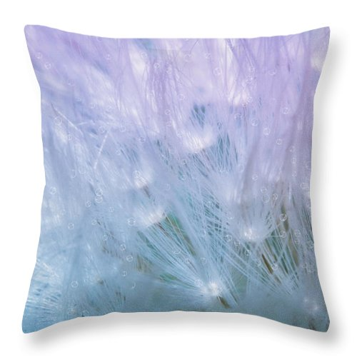 Dandelion Throw Pillow featuring the photograph Dandelion Whispers by Camille Lopez