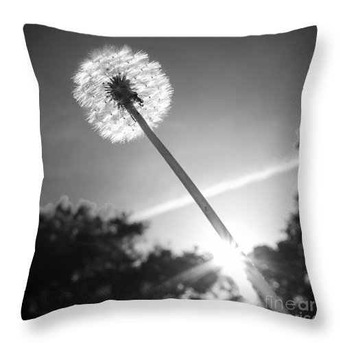 Duncan Longden Photography Throw Pillow featuring the photograph Dandylion Black And White by Duncan Longden