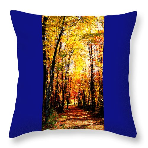 Sunlight Throw Pillow featuring the photograph Dappled Sunlight by Tina Meador