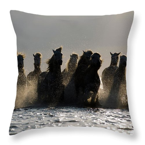 Horses Throw Pillow featuring the photograph Dark Horses by Carol Walker